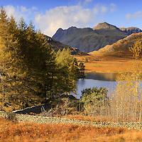Blea Tarn and the Langdale Pikes, Lake District, Cumbria Blea Tarn