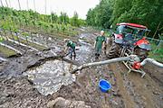 Nederland, the Netherlands, Beugen, 16-6-2016 Waterplassen en verdronken land bij een boomkwekerij in de omgeving van Boxmeer door de zeer plaatselijke, lokale, hoosbuien van de afgelopen weken. Een grote schadepost voor de akkerbouwers Deze kweker probeert het water met een mestpomp weg te pompen . Foto: Flip Franssen