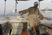 A crewman of a felucca steers his sailing boat while sailing on the River Nile at Luxor, Nile Valley, Egypt. Feluccas are ancient Egyptian sail boats which were used in ancient times as a primary mode of transport and are the only type of boat that is still used extensively in the country.