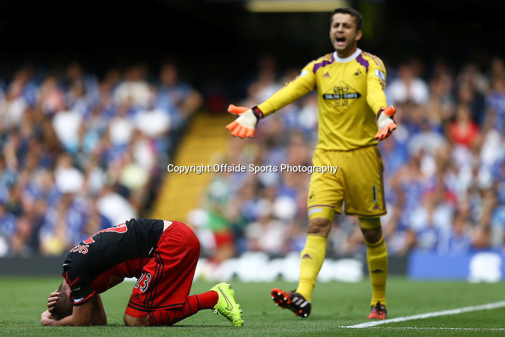 13 September 2014 - Barclays Premier League - Chelsea v Swansea City - Lukasz Fabianski of Swansea City complains to the linesman for failing to stop play when Gylfi Sigurdsson has a potential head injury - Photo: Marc Atkins / Offside.