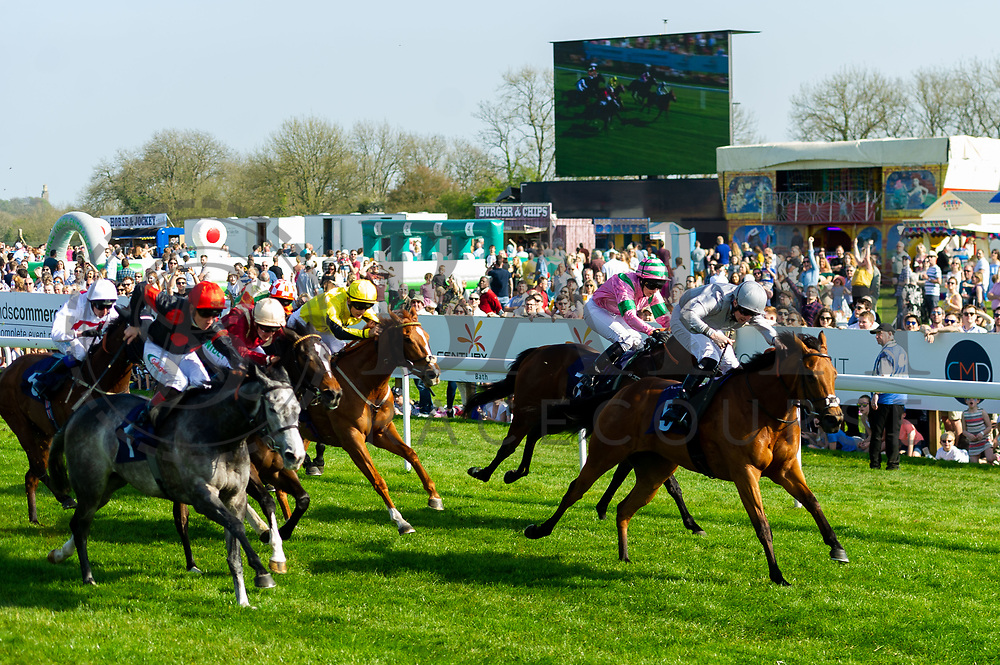 Ocelot ridden by Dougie Costello and trained by Robert Cowell, Queen of Desire ridden by Jack Mitchell and trained by Roger Varian  - Ryan Hiscott/JMP - 19/04/2019 - PR - Bath Racecourse- Bath, England - Race 5 - Good Friday Race Meeting at Bath Racecourse