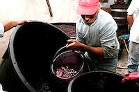 Questo contadino versa l'ultimo secchio di mosto nella vasca. Il mosto riposerà per una notte per poi iniziare la fermentazione.