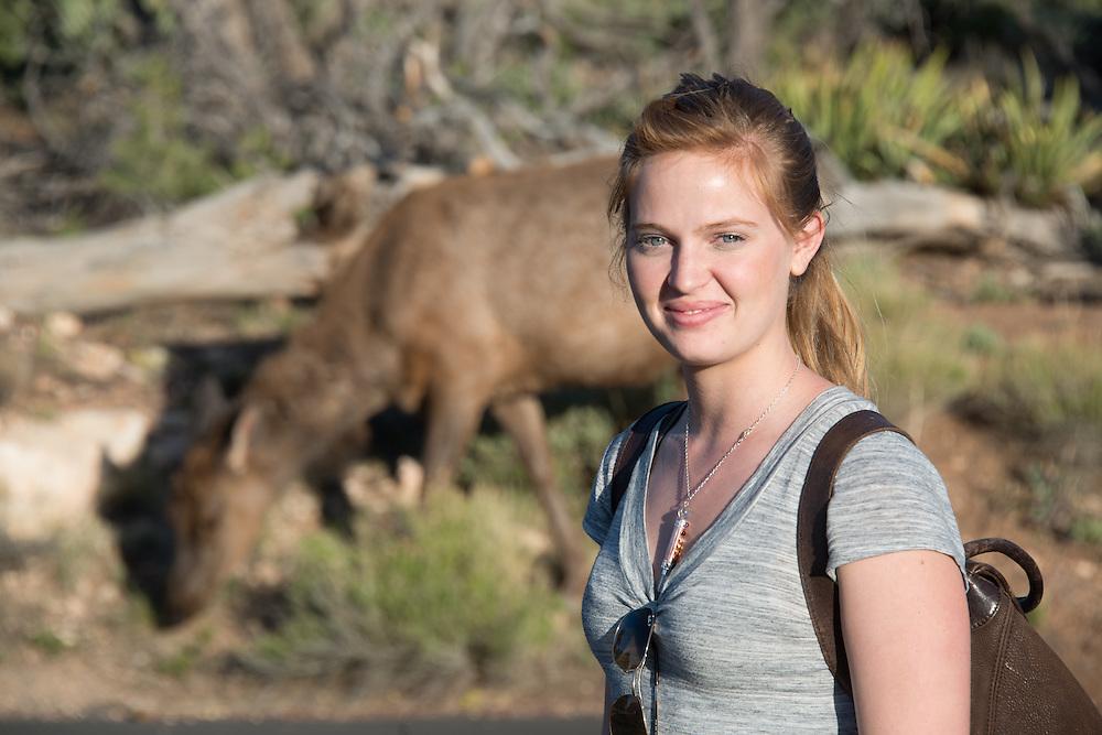 Elk and Traveler