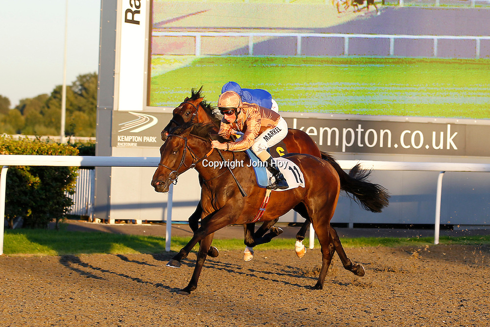 Concise and William Buick winning the 6.50 race