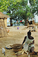 Ghana, Adaklu, Titikope, 2007.  River shells are plentiful in this yard, high above the water and in the center of the village.