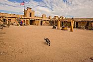 Bents Old Fort National Historic Site, La Junta, Colorado, cat,  Fitzpatrick