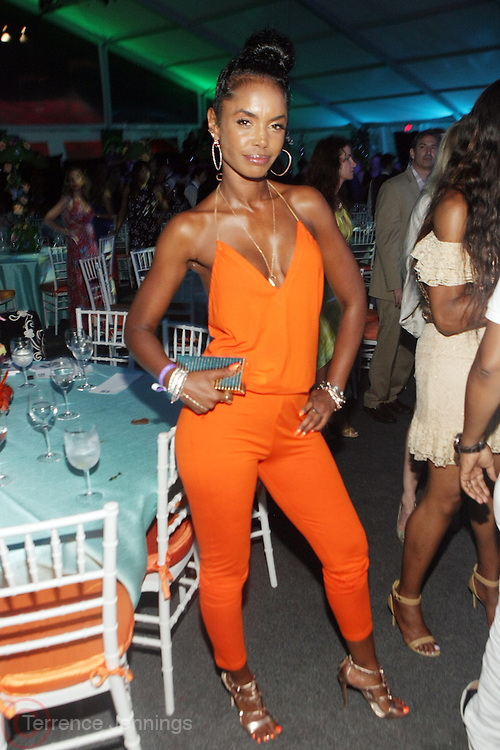 Water Mill, New York: Model/Actress Kim Porter attend the RUSH Philanthropic Arts Foundation 15th Annual Art For Life Benefit Gala held in the Hamptons at the Farmview Farms on July 26, 2014  in Water Mill, New York. (Terrence Jennings)