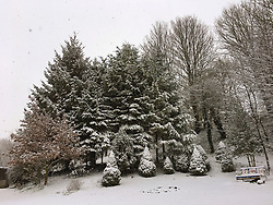 09 February 2018. Pas de Calais, Hauts de France.<br /> The snow arrived early in the morning covering trees in Hauts de France.<br /> Photo©; Charlie Varley/varleypix.com