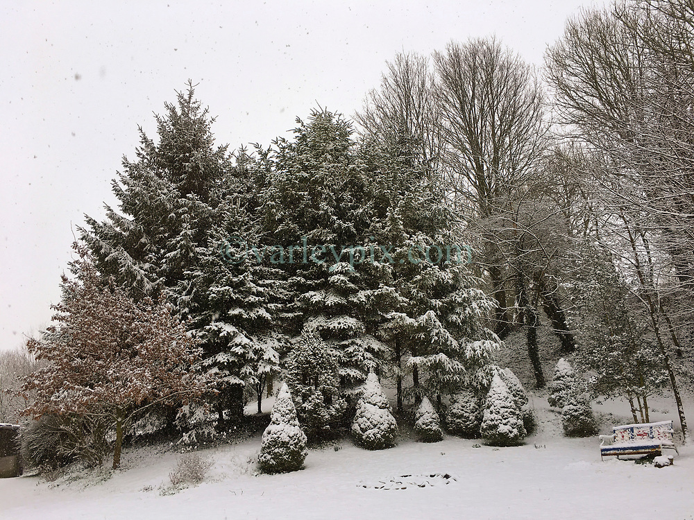 09 February 2018. Pas de Calais, Hauts de France.<br /> The snow arrived early in the morning covering trees in Hauts de France.<br /> Photo&copy;; Charlie Varley/varleypix.com