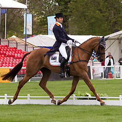 Overnight leader on 43, Christopher Burton (AUS) and Holstein Park Leilani compete in the dressage test during the first day of the 2013 Mitsubishi Motors Badminton Horse Trials.  Friday 03  May  2013.  Badminton, Gloucs, UK..Photo by: Mark Chappell/i-Images