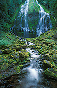 Lower Proxy Falls, Three Sisters Wilderness, Willamette National Forest, Cascade Mountains, Oregon.