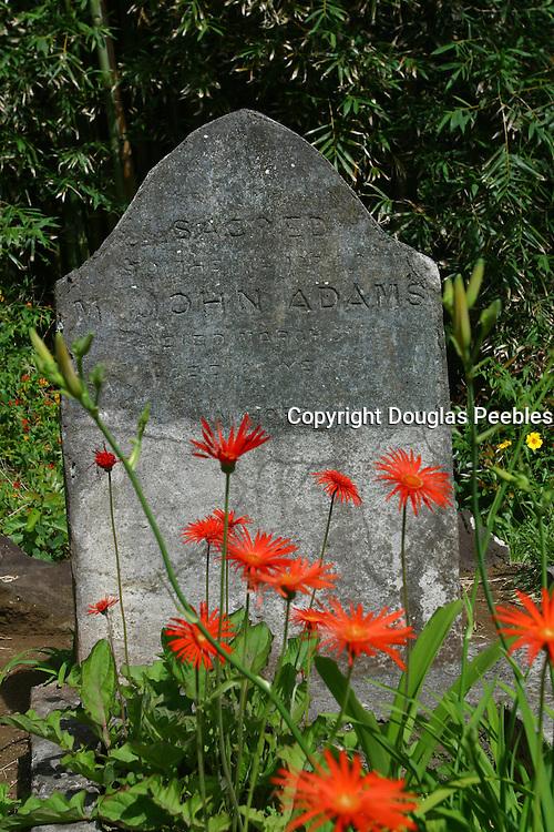 John Adam's grave, Pitcairn Island<br />