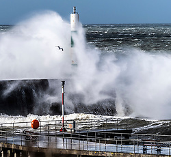 © Licensed to London News Pictures. 10/03/2019. Aberystwyth, UK. Gale force westerly winds gusting at over 60mph as huge waves sweep across the Irish Sea at Aberystwyth on the Cardigan Bay coast in West Wales. Photo credit: Keith Morris/LNP