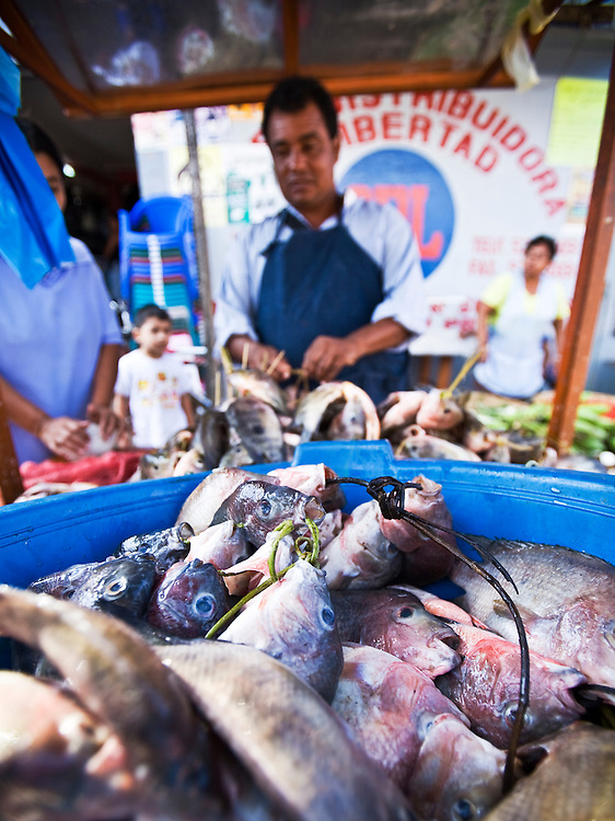 "Fish for sale in Masatepe. Matatepe is one of the ""Los Pueblos Blancos, a series of towns on the central plateau of Nicaragua. It is located close to Granada, Nicaragua."