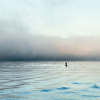 Thick fog hoving over an body of ocean  with a single buoy during a sunrise..
