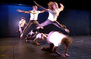 Fao Declan Hassett.........Australian Dance Theatre performing thier Birdbrain Show in the Black Box last Night(TUES). Photo:Andrew Downes