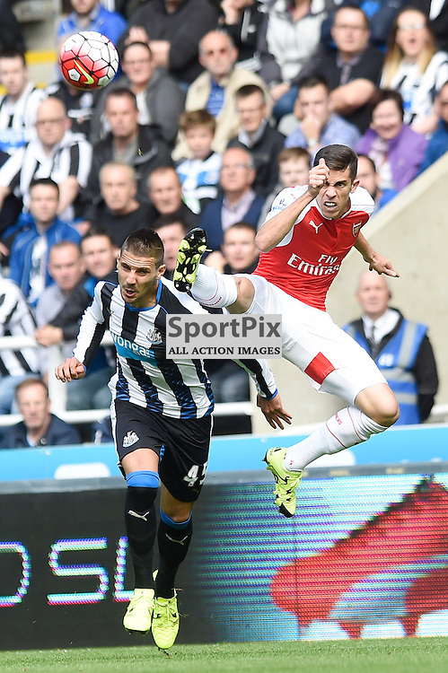 Aleksandar Mitrovic (left) and Gabriel (right) in the Newcastle United v Arsenal Barclays Premier League match at St James' Park Newcastle 09 August 2015<br /> <br /> (c) Greg Macvean / SportPix.org.uk