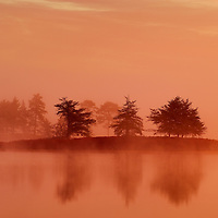 Sunrise through the fog at Seney National Wildlife Refuge in the Michigan Upper Peninsula.