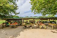Farm Stand, Sagaponack, NY