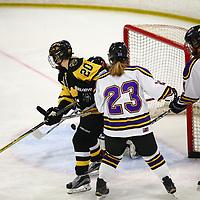 Women's Ice Hockey: University of St. Catherine Wildcats vs. Gustavus Adolphus College Gusties