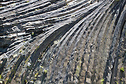 Detail of rock formations at Devils Postpile National Monument, near Mammoth Lakes, California.
