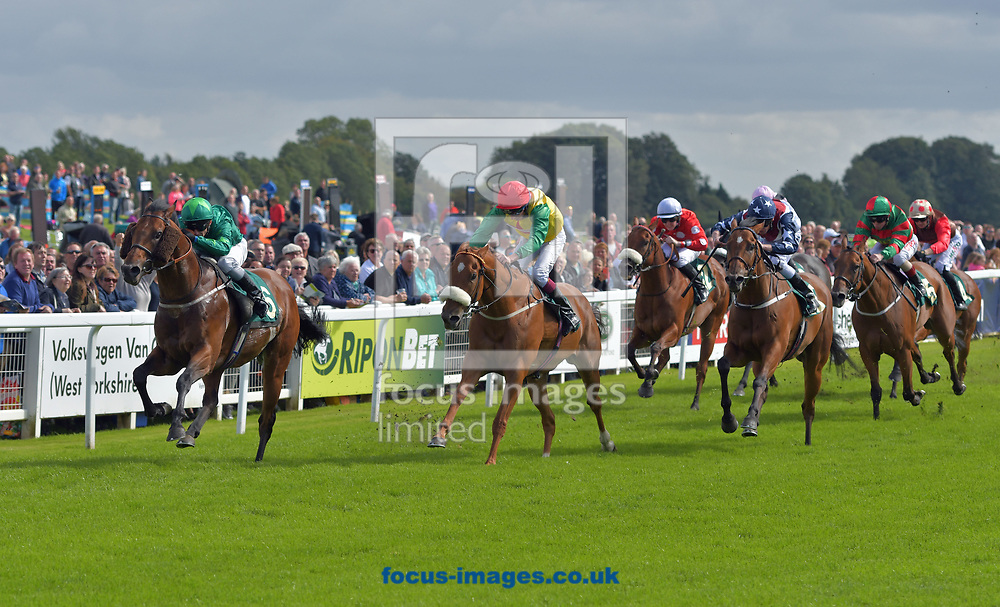 Mattmu ridden by David Allan (dark green) wins William Hill great St Wilfred handicap during the William Hill Great St Wilfrid Stakes meeting at Ripon Racecourse, Yorkshire.<br /> Picture by Martin Lynch/Focus Images Ltd 07501333150<br /> 19/08/2017