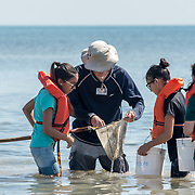 KEY BISCAYNE, FLORIDA, MARCH 22, 2017<br /> 125 fifth grade students from Citrus Grove Elementary School and the American Heritage School  collect water grass water samples in Crandon Park, Key Biscayne, Florida to test water quality, enter data and learn how they can improve the quality of water in their communities.  Phillipe Cousteau Jr., Co-Founder and President, EarthEcho International, and Miami Waterkeeper and educators from the Nature Center worked on the project together.<br /> (Photo by Angel Valentin/Freelance)
