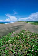 Sigatoka Sand Dunes National Park, Fiji<br />