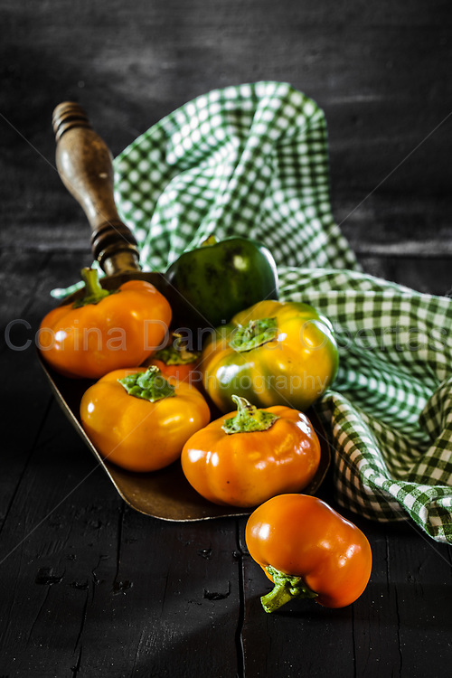 Hungarian tomato peppers in a copper bailer, on black wooden background.