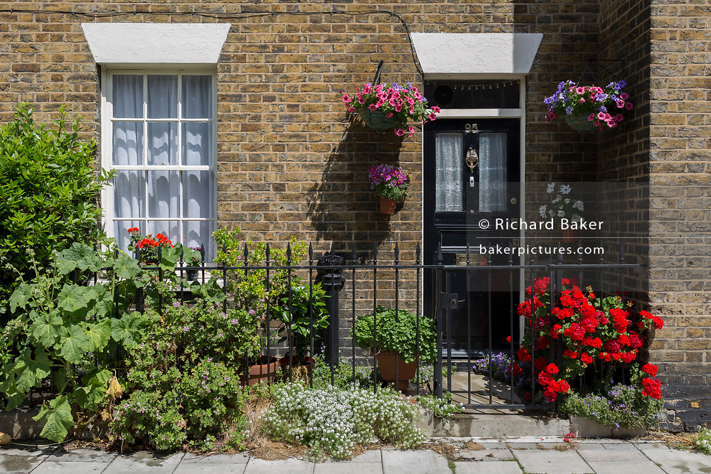 The pretty frontage of a terraced house featuring perfect flowers, in the south London borough of Southwark, on 1st June 2017, in London, England.
