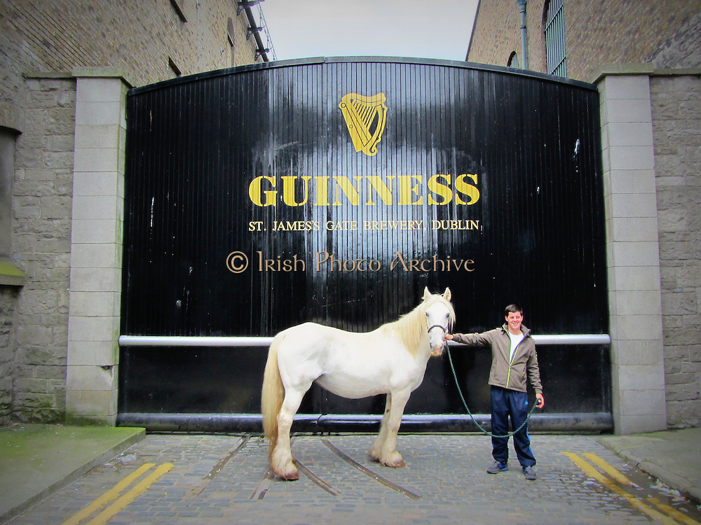 Guinness White Horse Boy, Black Door,