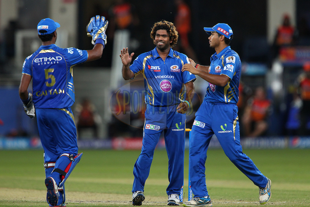 Lasith Malinga of the Mumbai Indians celebrates the wicket of K.L Rahul of the Sunrisers Hyderabad during match 20 of the Pepsi Indian Premier League Season 2014 between the Mumbai Indians and the Sunrisers Hyderabad held at the Dubai International Stadium, Dubai, United Arab Emirates on the 30th April 2014<br /> <br /> Photo by Ron Gaunt / IPL / SPORTZPICS