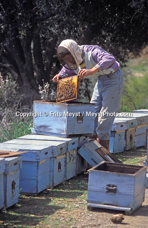 Dalyan, Turkey, 2004. A bee keeper checks his hives for honey. The mountains of around the Koycegiz golu lake off good trekking possibilities. The water of the lake flows through Dalyan and passes rock graves before it ends up in the Mediterranean. Photo by Frits Meyst/Adventure4ever.com