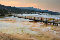 Boardwalk over thermophilic algae and fresh desposits of travertine emanating from Grassy Spring section of Mammoth Hot Springs, Yellowstone National Park