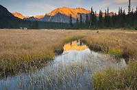 Sunset over Kangaroo Ridge and meadows of Washington pass, North Cascades Washington