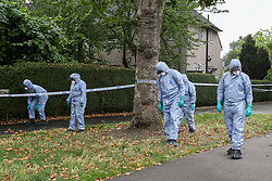 © Licensed to London News Pictures. 05/08/2019. London, UK. Crime scene investigators carries out the search on The Roundway in Tottenham, north London following a death of a woman in no 46 Waltheof Gardens. Police were called around 10:45 am on 4 August 2019 where the body of an 89-year-old woman was found. According to the police one or more suspects gained entry to the woman's house between Saturday (3 August) evening and Sunday (4 August) morning. Photo credit: Dinendra Haria/LNP