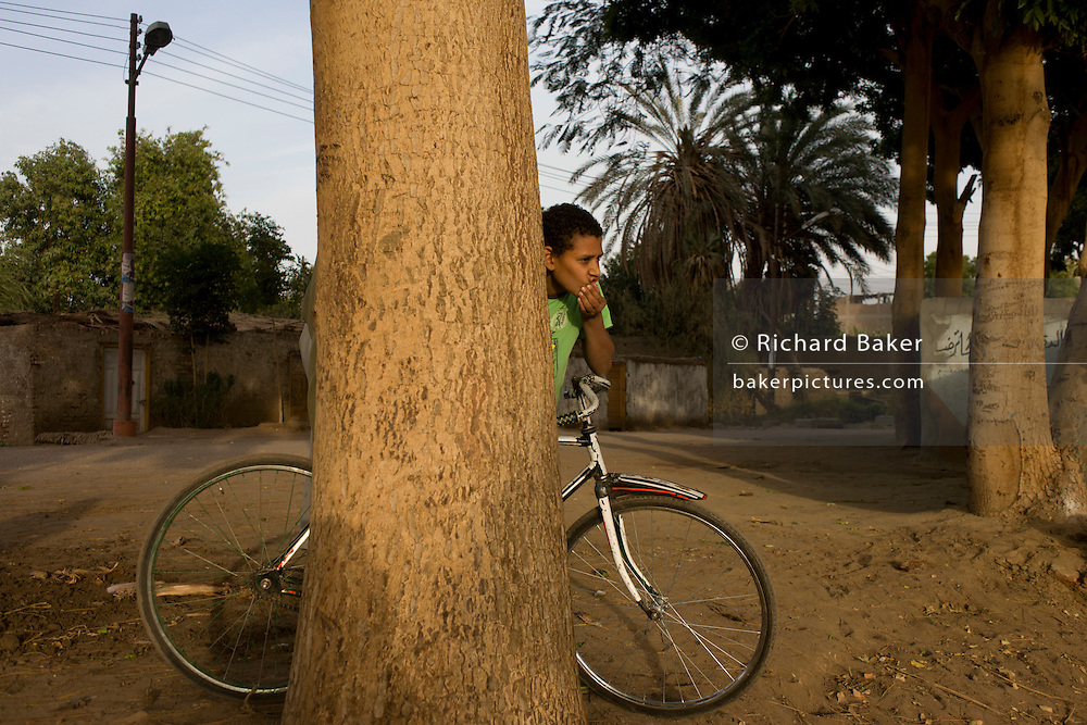 A young Egyptian boy peers from behind a tree in the village of Bairat on the West Bank of Luxor, Nile Valley, Egypt.