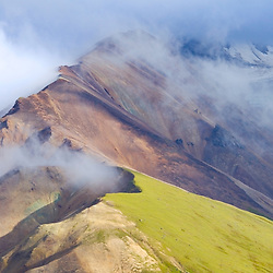Tundra and a cloudy mountain in Denali National Park.