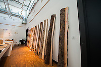 Various Scandinavian wood native to the region on display. Some of the wood were used in cabinet and furniture making.