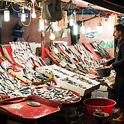 Vendors selling freshly caught fish at the Karakoy fish market on the banks of the Golden Horn.