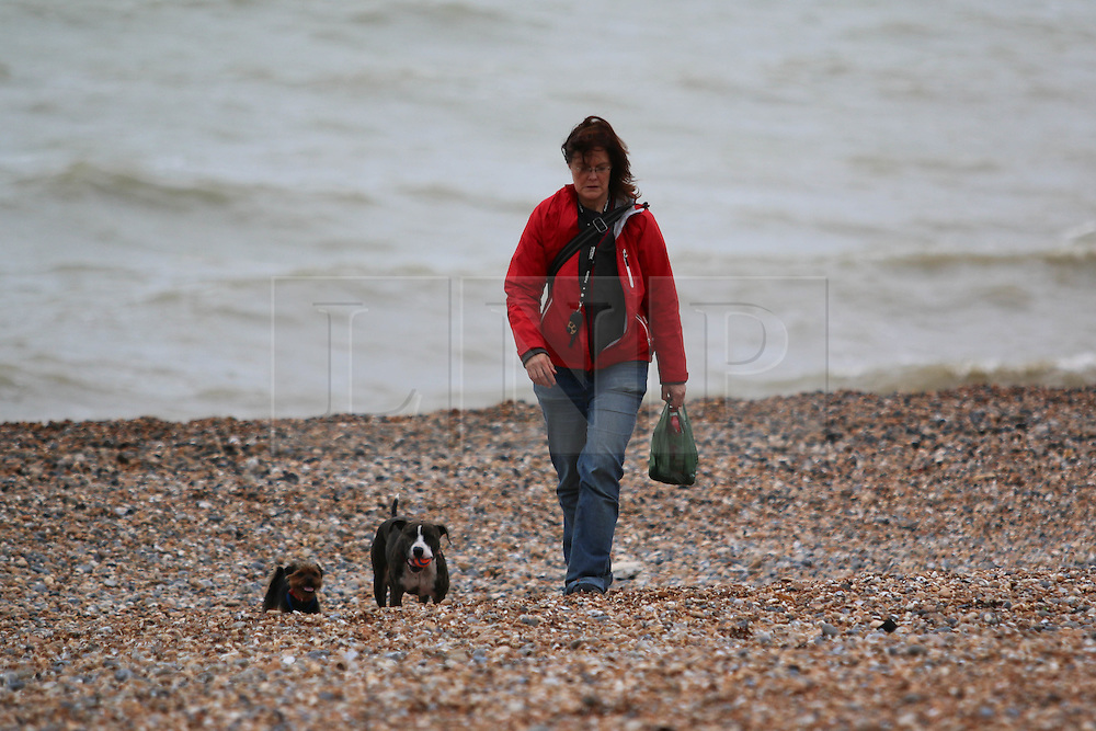 © Licensed to London News Pictures. 26/10/2014. Brighton, UK. A woman taking the dogs for a walk on the beach. A cloudy day with possibility of some localised showers. The temperatures are expected to reach 15C in Brighton and the South Coast. Photo credit : Hugo Michiels/LNP