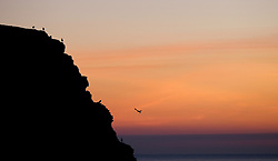 © Licensed to London News Pictures.02/10/15<br /> Staithes, UK. <br /> <br /> Seabirds land on cliffs overlooking the harbour as dawn breaks in the North Yorkshire village of Staithes on the east coast as the warm autumn weather continues.<br /> <br /> Photo credit : Ian Forsyth/LNP