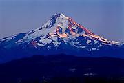 Mt. Hood at sunset, Mt. Hood National Forest, Oregon