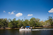 Tourists on boat trip at Ten Thousand Islands, Florida Everglades, United States of America