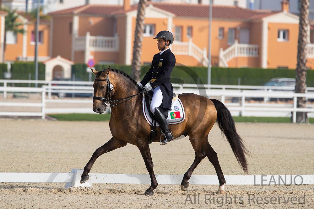 Manuel Vinagre - Almansor<br /> European Championships Dressage 2016<br /> &copy; DigiShots
