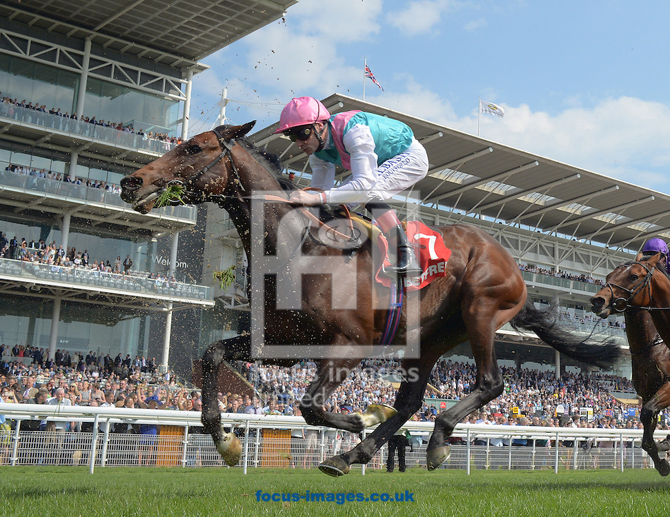 A preview of this weekend's favourites in UK racing.<br /> Picture by Martin Lynch/Focus Images Ltd 07501333150<br /> 13/10/2016<br /> <br /> <br /> Original Caption:<br /> Midterm at York 12-5-16.