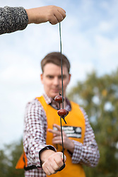 © Licensed to London News Pictures. 11/10/2015. Southwick, UK. The 2015 Conker World Championships celebrates it's 50th year with competitors from around the world competing to become this years conker king. Photo credit: Andrew McCaren/LNP