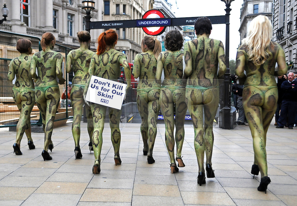 under license to London News Pictures. 23/03/11. PR  USE ONLY. PETA Photo credit should read Stephen Simpson/LNP