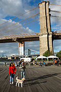 Brooklyn, NY - 9 September 2017. People take a stroll with their dog at the ferry landing at Pier 1 of Brooklyn Bridge Park.