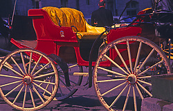 A Horse and Carriage in Manhattan